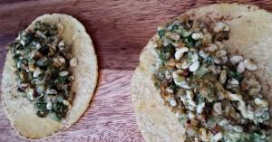 Taco de escamoles o larvas de la hormiga Liometopum apiculatum. Hormiga escamolera. Muy valoradas como alimento desde tiempos prehispánicos.