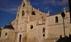 Catedral de Palencia. Los 5 Mejores