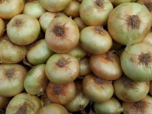 Cebolla horcal Palenzuela (Palencia)