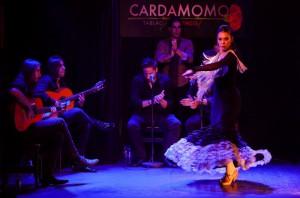 Flamenco-Madrid-Cardamomo-IreneCorrea