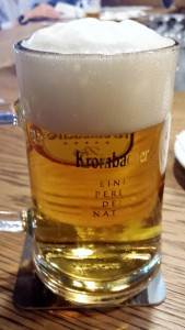 Jarra de cerveza. Los 5 Mejores