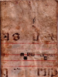 Libro de Cozina de Grajal de Campos. Los 5 Mejores.