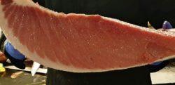 Ventresca. Ronqueo de atún. Los 5 Mejores