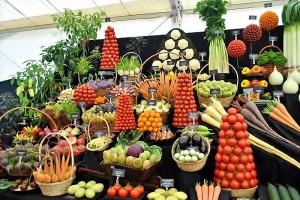 Verduras. Los 5 Mejores