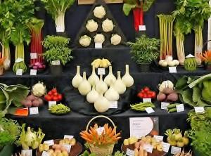 Verduras 2. Los 5 Mejores